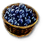 File:Tw3 blueberries.png