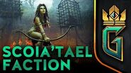 BETA VIDEO Scoia'tael Faction GWENT The Witcher Card Game