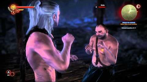 The Witcher 2 Fight Club