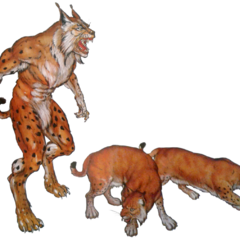 A werecat surrounded by lynxes – concept art for <i><a href=
