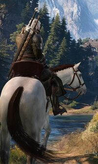 Tw3 Geralt to Morhen