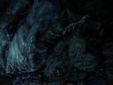 في جسد ذئب