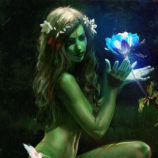 a grovekeeper