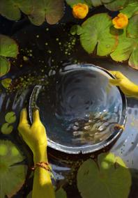 Gwent cardart scoiatael water of brokilon