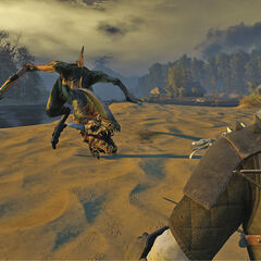 Geralt fighting with forktail