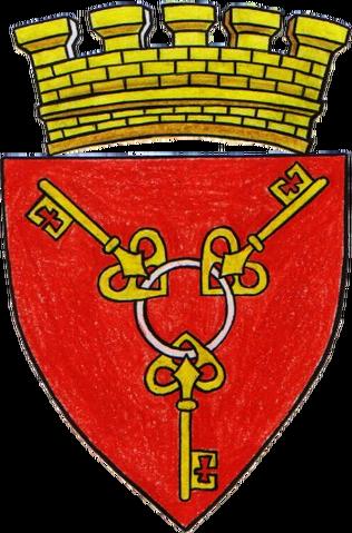 File:COA Novigrad.png