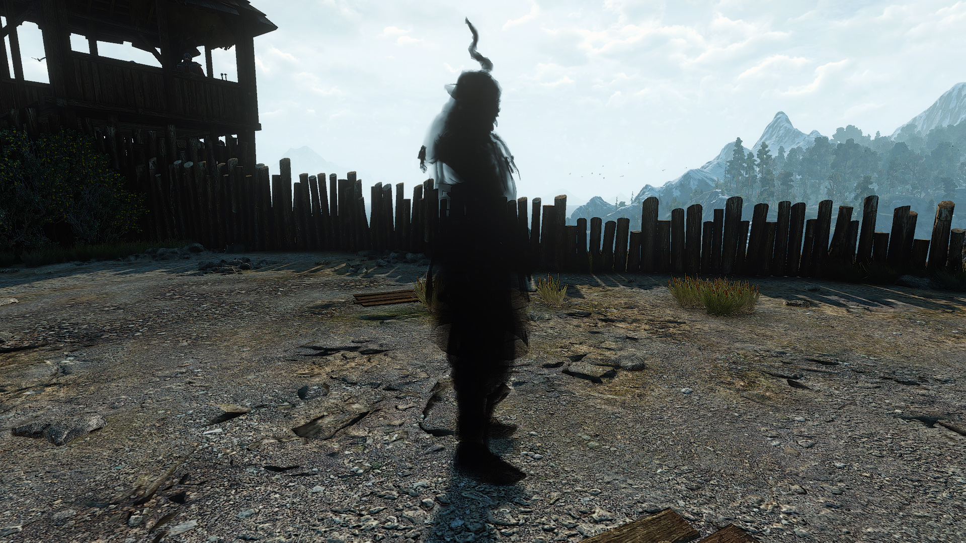 Quest Master of the arena in The Witcher 3: the passage