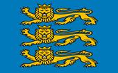 Flaga Cintra2