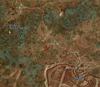 Tw3 map crookback bog 02