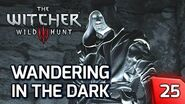 The Witcher 3 Wandering in the Dark - Golem Bossfight - Story & Gameplay Walkthrough 25 PC