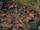 Gudmund's camp