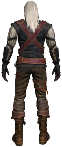 Geralt 3 back