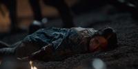 Netflix dead Calanthe