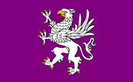 Flaga Liga z Hengfors2