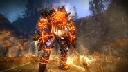 Tw2 screenshot golem fire elemental№2.png