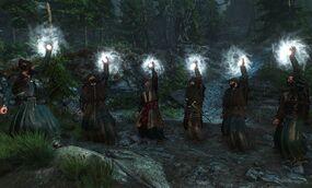 Tw3 Skellige druids