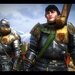 Aryan prima del duello con Geralt