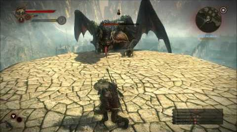 The Witcher 2 - How to kill Dragon Final Boss (HARD)