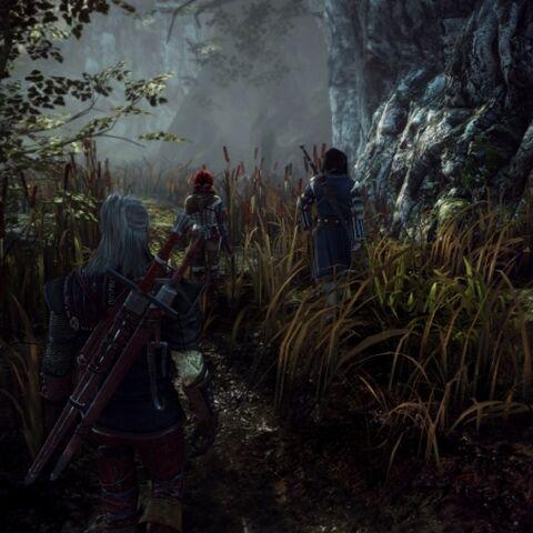 Triss, Geralt e Roche nei pressi di Flotsam.