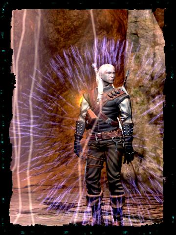 File:Scenes Geralt Alzurs shield.png