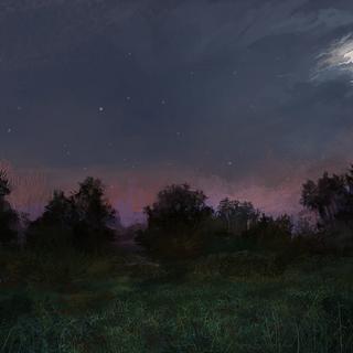 Fields at night