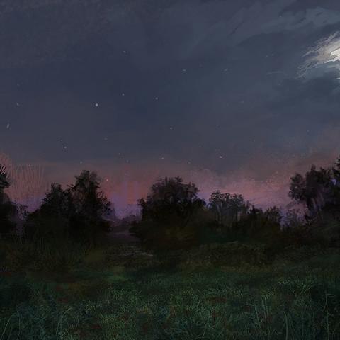 Notte nei Campi