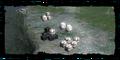 Thumbnail for version as of 18:12, November 16, 2008