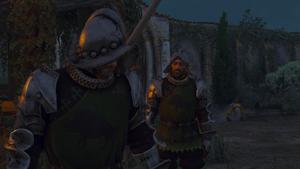 Tw3 Dun Tynne Guard