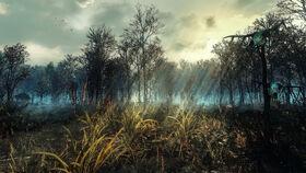 Crookback bog by creathor4005-d8vuu64