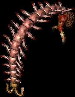 Bestiary Centipede full