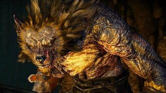 The Witcher 3 Morkvarg the Werewolf Boss Fight (Hard Mode)