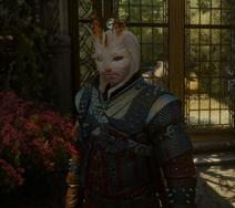 Tw3 hare mask on geralt