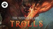 What are Trolls? The Witcher 3 Lore - Trolls