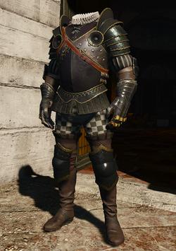 File:W3 Nilfgaardian Guard Armor.png