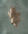 Tw3 map tengelstrand isle