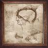 Decorative Painting anatomical detail