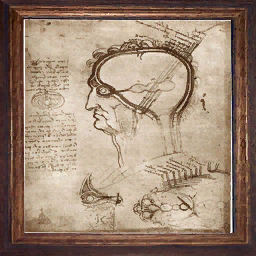 File:Decorative Painting anatomical detail.png