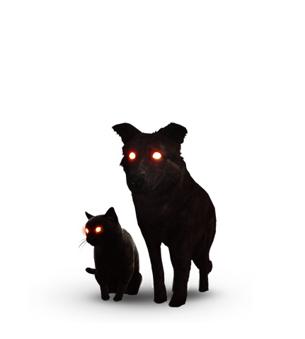 File:Tw3 journal black cat and dog.png