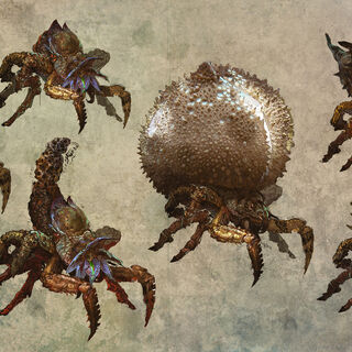 Concept art of arachas for <i>The Witcher 2</i>