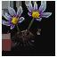 Tw3 white myrtle petals
