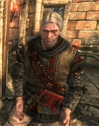 Tw2 screenshot armor tirnalia