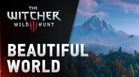 Beautiful World of The Witcher