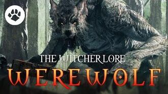 What are Werewolves? The Witcher 3 Lore - Werewolves