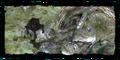 Thumbnail for version as of 17:56, November 16, 2008