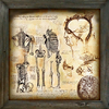 Decorative Painting anatomical