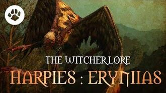 What are Harpies? The Witcher 3 Lore - Harpies Erynias