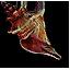 Tw3 sea shell