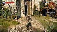 Let's Play - The Witcher 3 Part 126 - Berengar's Blade - Chort BOSS battle