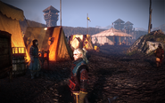Tw2-screenshot-kaedweni-camp-03