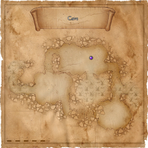 Map of the cave in the Swamp